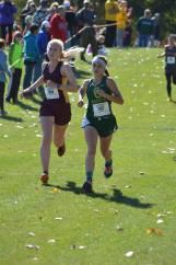 2016-hudson-trin-finish